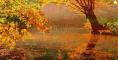 Autumn Leaves Video Vorschaubild